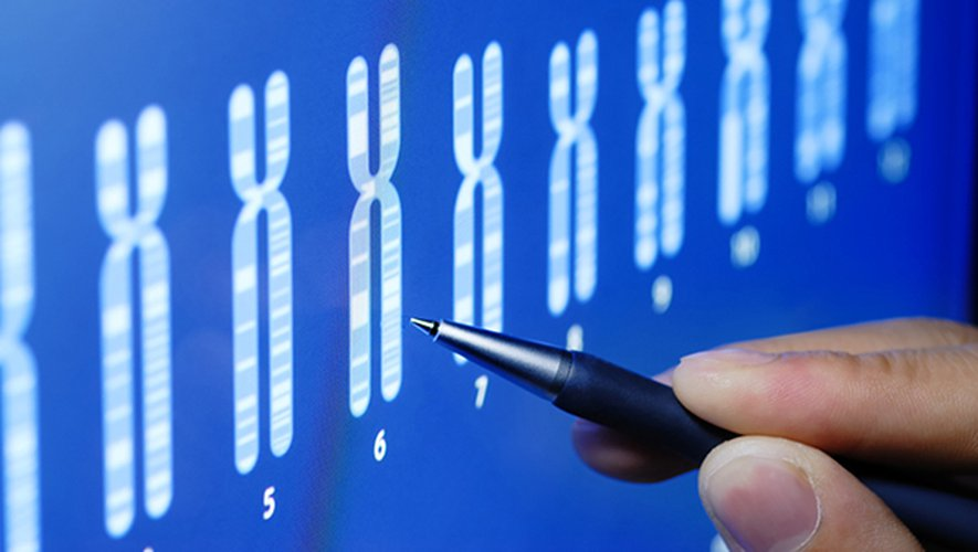 """Dans un communiqué, l'OMS a expliqué que le comité d'experts appelait l'ensemble des chercheurs à """"enregistrer leurs essais"""" auprès de ce """"registre mondial""""."""