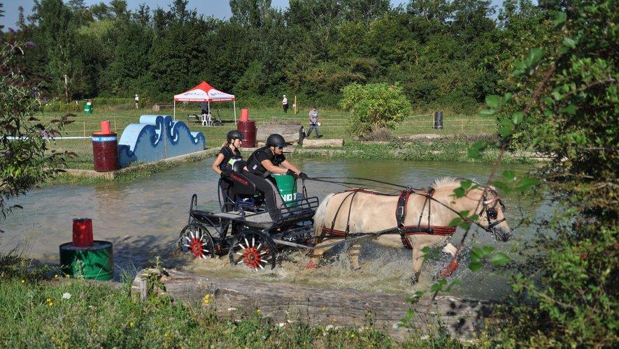 La manifestation, gratuite, sera l'occasion de voir à l'oeuvre des types de chevaux très variés.