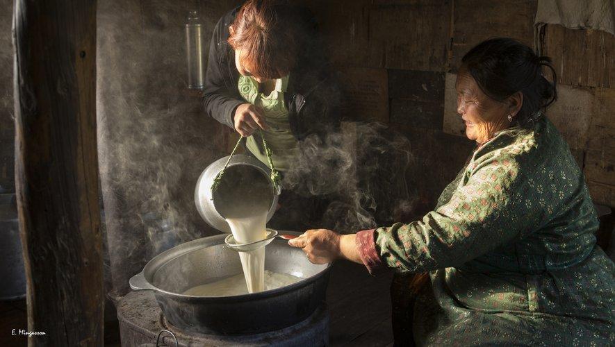 Sur la route du lait en Mongolie