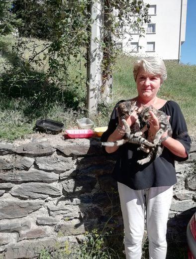 Nelly Guy devant les gamelles des chats du quartier et avec deux malheureux chatons qui viennent d'être abandonnés au Sailhenc.