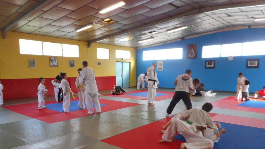 Le judo et le taïso attirent petits et grands.