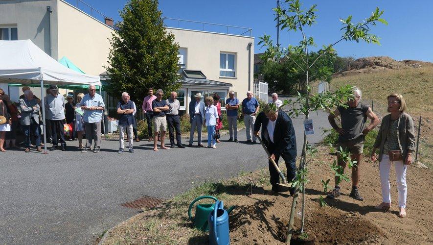 M. Saurel puis Mme Cazard plantent un chêne, symbole des 80 ans de l'association.