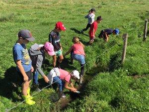 Les enfants ont effectué des prélèvement dans la Brianelle.