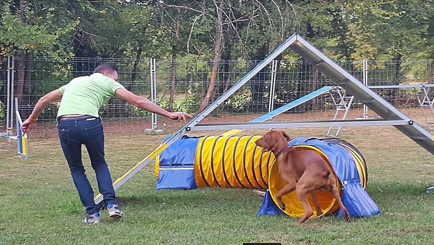 Des parcours autant sportifs pour l'animal que son maître.