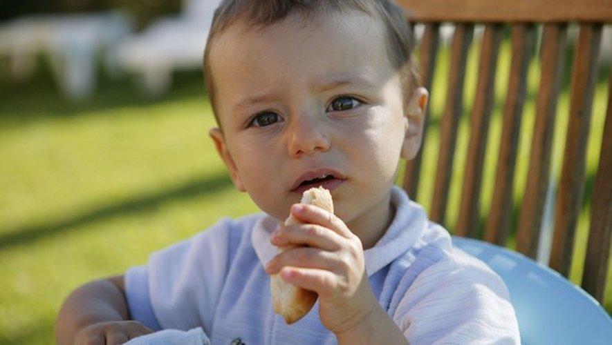 Diversification alimentaire : quand lui donner du pain ?