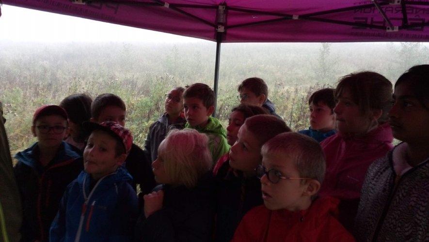 Les enfants sont attentifs aux explications de Manuel.
