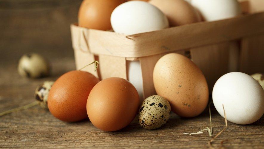 56% des oeufs vendus au cours du premier semestre 2019 provenaient d'élevages alternatifs