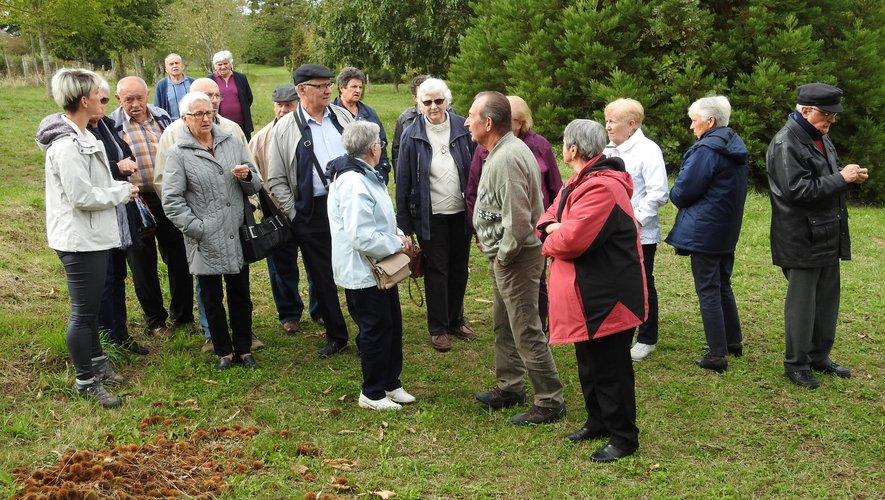 Un groupe de visiteurs en visite dans la châtaigneraie du Conservatoire.