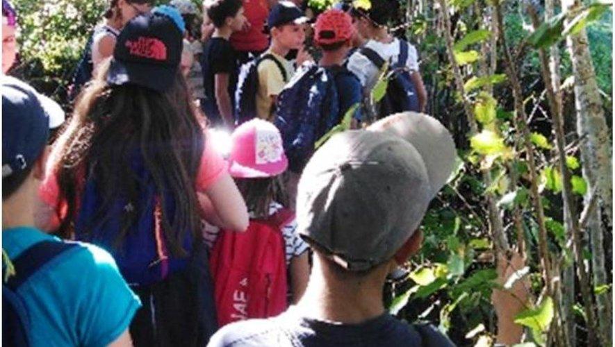 Les 19 élèves des CM de l'école publique de Sainte-Geneviève ont bénéficié de cette nouvelle action.