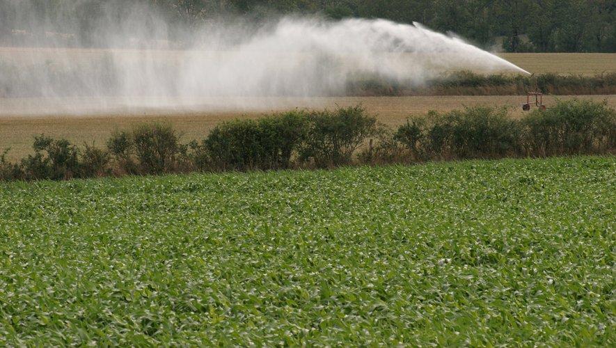 L'irrigation est très réglementée, mais reste moins fréquente en cette saison.