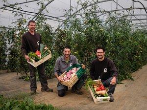 Depuis quelques jours, les trois amis peuvent fournir des cageotsde légumes variés.