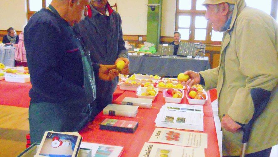 Détermination des variétés de pommes.