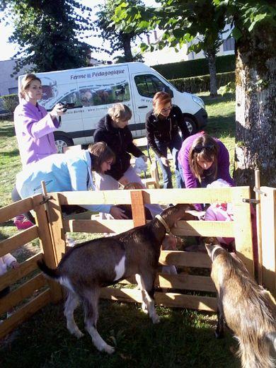 Les enfants ont pu toucherdu doigt le monde animal.