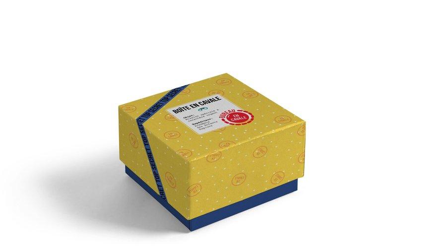 La Boîte en Cavale livre chaque mois à domicile une boîte mystérieuse comprenant une histoire, des énigmes inédites et des objets insolites à collectionner, pour accomplir une mission top secrète qui évolue dans le temps
