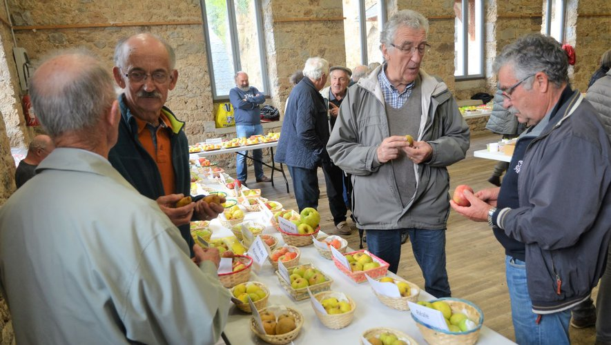 Ce sont environ 150 variétés de pommes et autres fruits qui étaient présentés par des adhérents de VL12 venus de tout le département.