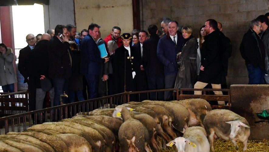 Le ministre Guillaume a pu avoir un échange avec les nombreux représentants des filières agricoles aveyronnaises.