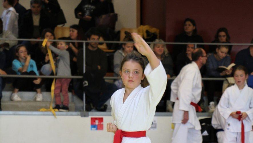 Le club baraquevillois trusteles médailles au championnat Aveyron de katas.