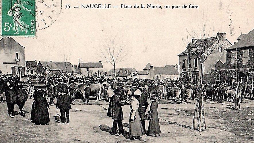 Les foires de Naucelle comptaient parmi les plus importantes du département.