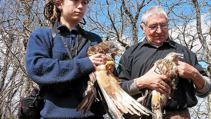 Hélène et Jean-Claude Austry s'occupent de beaucoup d'oiseaux au quotidien. Pourtant, le centre de sauvegarde est menacé de fermeture, faute de moyens financiers.