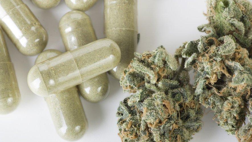 Le cannabis ingéré prend en moyenne quatre heures de plus pour produire des effets perceptibles qu'avec le cannabis fumé.