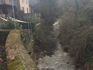 En milieu urbain, une bonne gestion des milieux aquatiques permet de réduire les risques d'inondations.