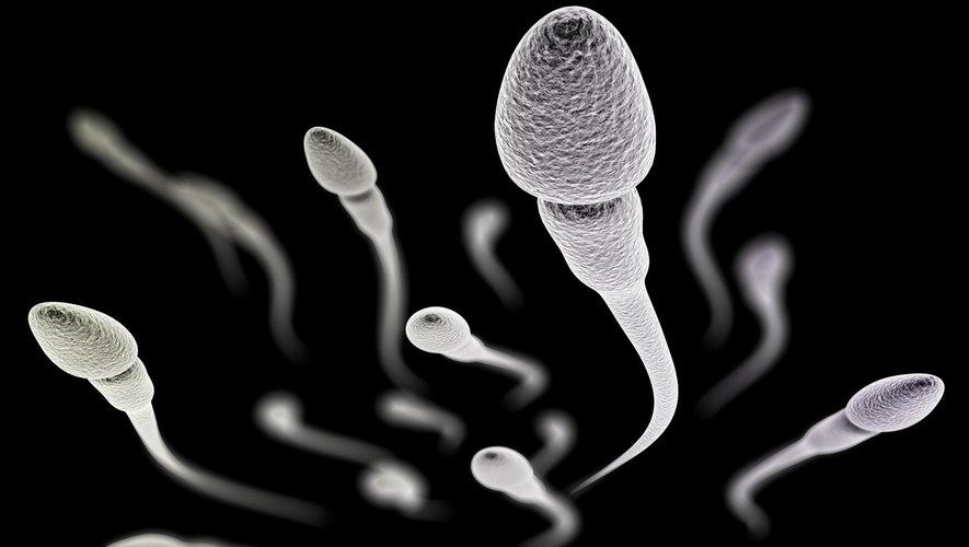 Cancers pédiatriques : la fertilité diminuée des hommes