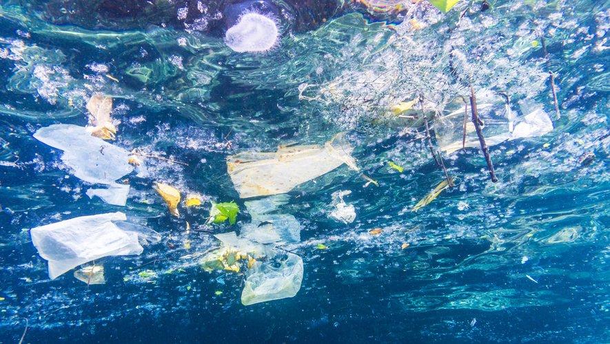 La chasse aux plastiques a commencé un peu partout dans le monde, pour tenter de réduire les 8 millions de tonnes de plastique qui finissent chaque année dans l'océan
