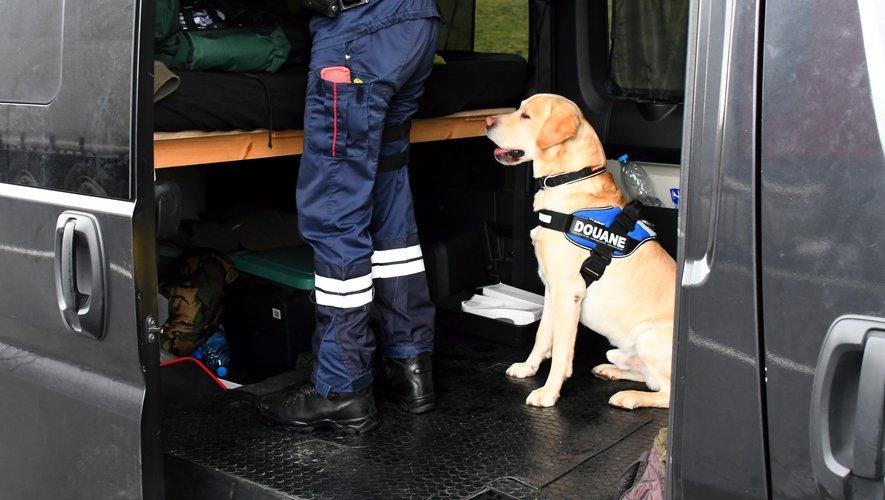 Lors des opérations de contrôles, les douaniers peuvent faire intervenir un maître-chien pour lever tout soupçon.