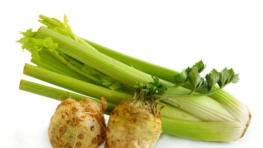 Menu santé : le céleri, du vert en hiver !
