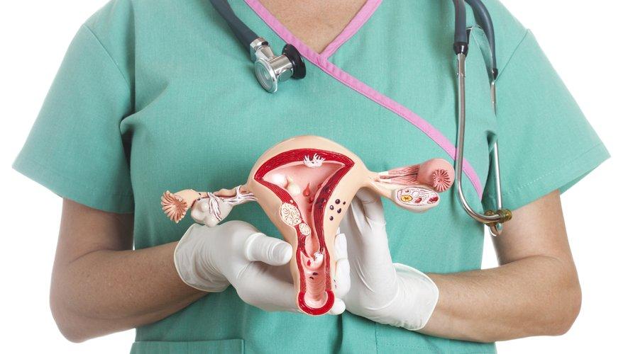 La radiologie interventionnelle dans le cadre du traitement des fibromes utérins reste marginale : on compte entre 1500 et 1800 interventions chaque année en France, contre 30 000 hystérectomies.