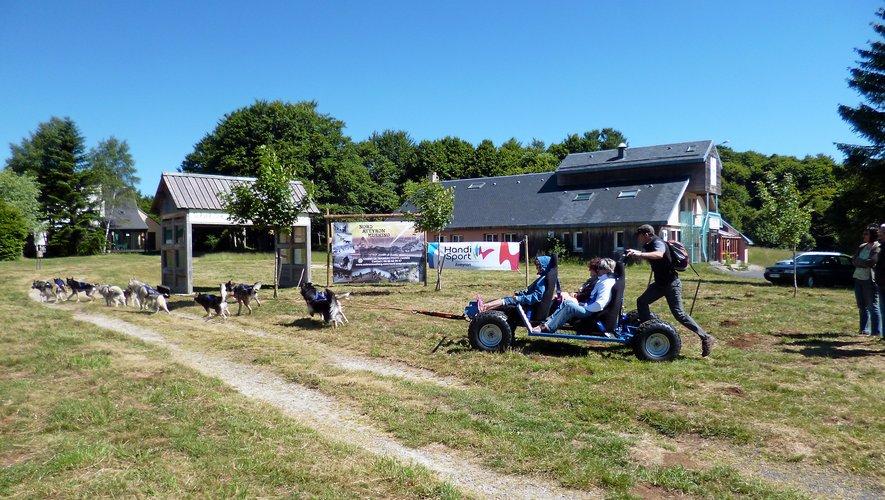 Nord-Aveyron Mushing propose des activités pendant les vacances scolaires.