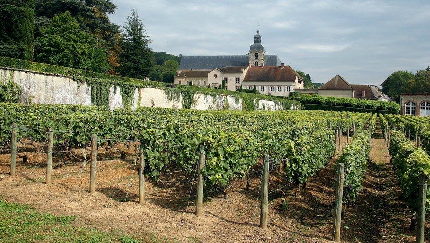"""Moët Hennessy arrêtera """"fin 2020"""" l'utilisation des herbicides dans tous ses vignobles de Champagne."""