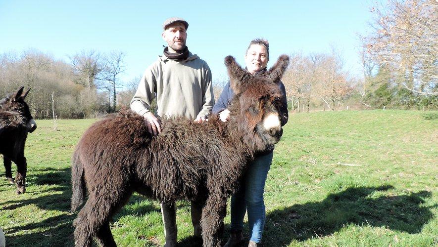 Antoine et Domitille aiment leurs animaux qui le leur rendent bien.