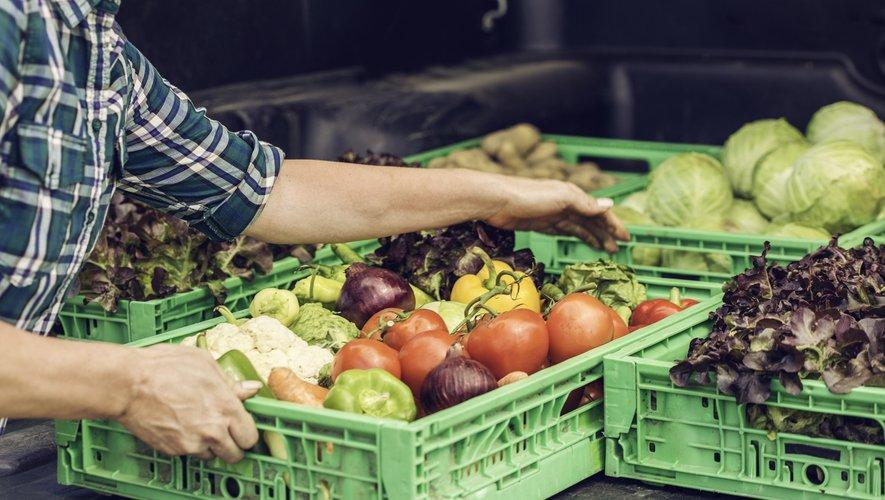 """La Fédération de l'agriculture biologique (Fnab) va lancer un label """"bio française équitable"""" qui garantit aux consommateurs des légumes biologiques produits en France et un prix rémunérateur aux agriculteurs bio"""