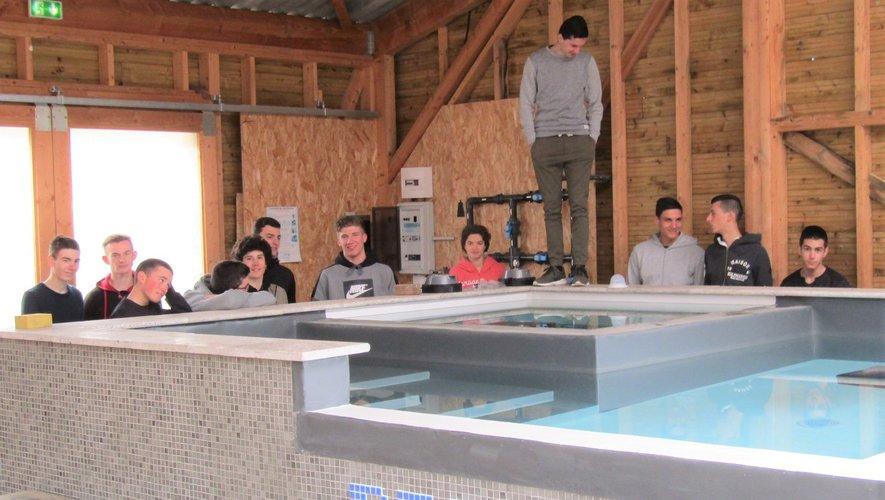 Combien de candidats pour se lancer dans le grand bain de la piscine ?