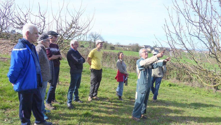 Tout sur la taille des arbres fruitiers  avec Variétés Locales 12