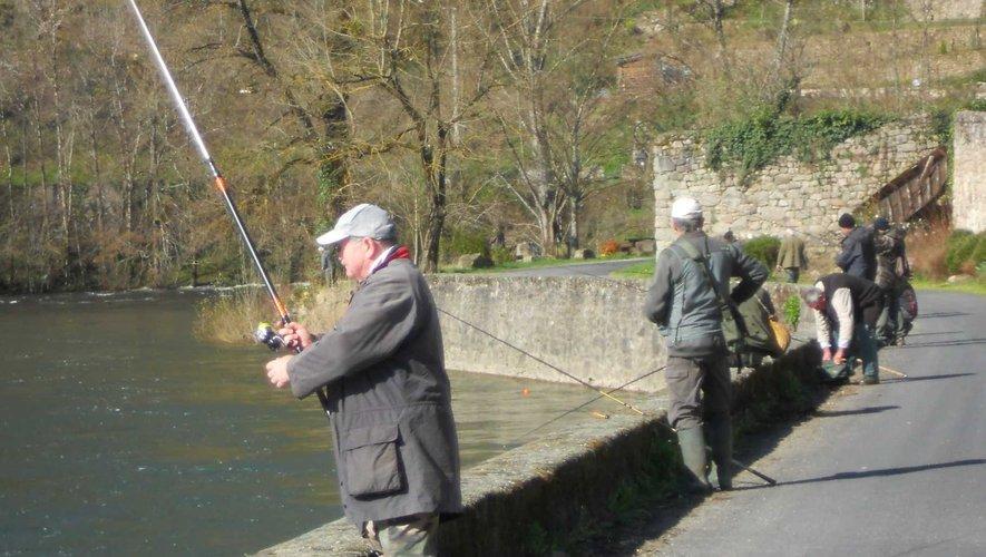 Des pêcheurs disposés sur les quais du Lot