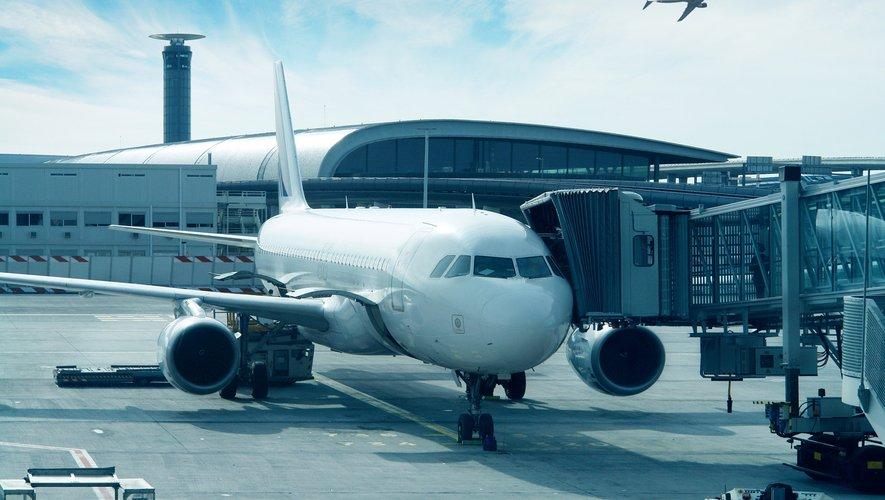 Les compagnies aériennes, croisiéristes et voyagistes sont frappées de plein fouet par la crise du coronavirus qui entraîne d'importantes restrictions sur les déplacements.