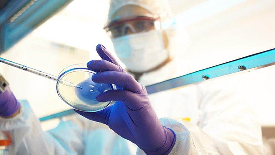Les travaux ont été réalisés à partir d'échantillons de trois hommes âgés de 31, 48 et 80 ans, ainsi que deux femmes âgées 30 et 46 ans. Les cinq patients ont été testés positifs au Covid-19 et hospitalisés en France.