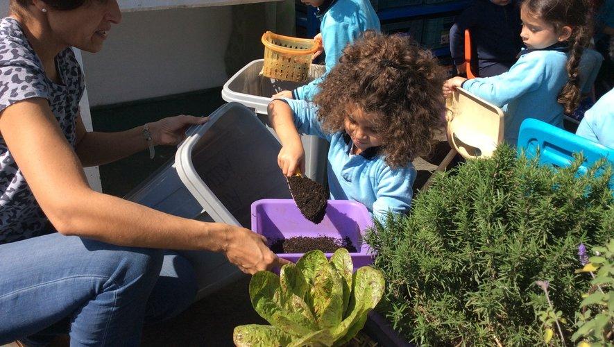 Muriel Bastide cultive un petit jardin dans son école et les 24 enfants de sa classe prennent plaisir à travailler la terre.
