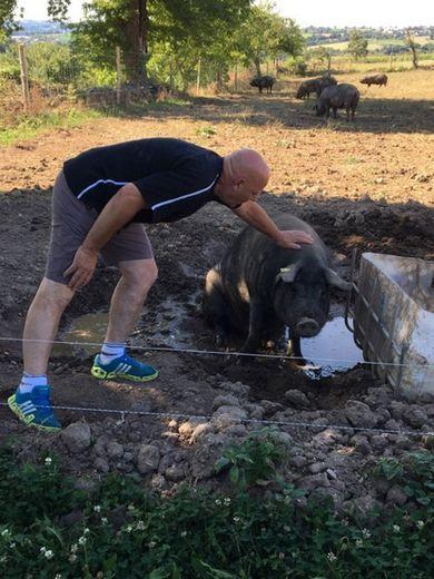 « Chacun de nous est capable de donner à manger aux cochons ».