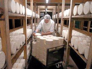 Un assouplissement du cahier des charges qui devrait aider la filière de ce fromage emblématique.