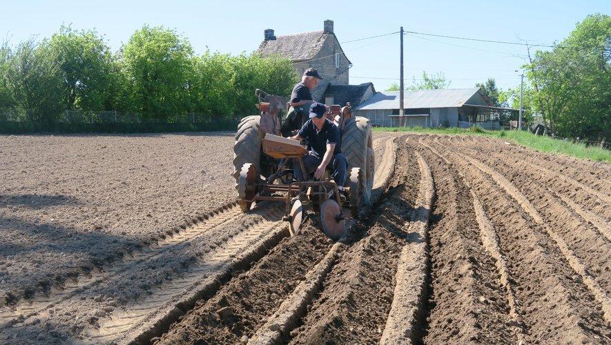 Michel et Christophe plantent les patates à Cassou avec une planteuse.