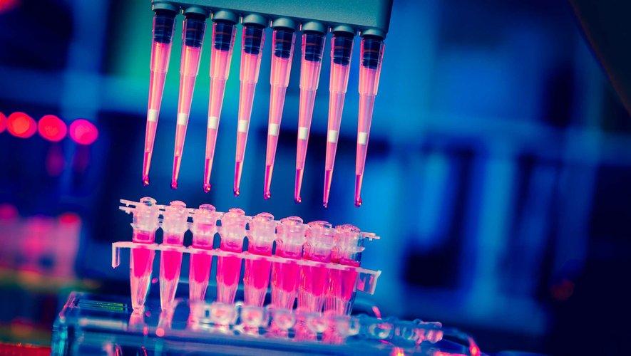 Des médecins ont réussi à greffer des cellules hépatiques dérivées de cellules souches embryonnaires chez un nouveau-né souffrant d'une maladie du foie.