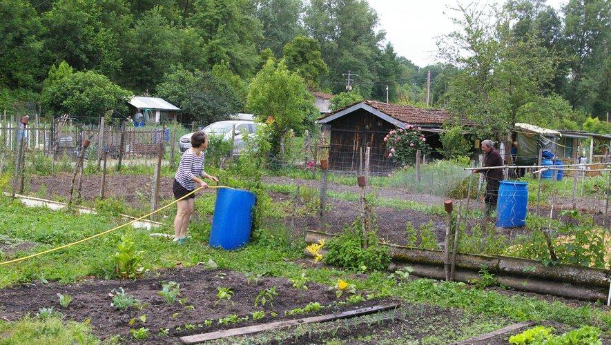 """La solidarité est de mise entre jardiniers et jardinières qui échangent leurs """"combines""""."""