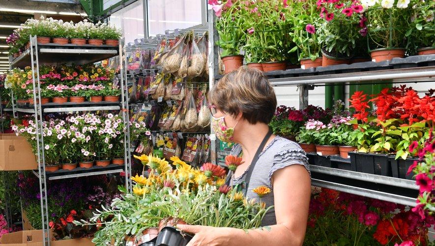 Fleurs ou légumes ont trouvé bien des mains vertes durant le confinement.