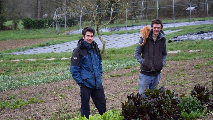 Robin José (à gauche)et Eugène Driquertont une surface importantede terre pour le maraîchageet l'apiculture.