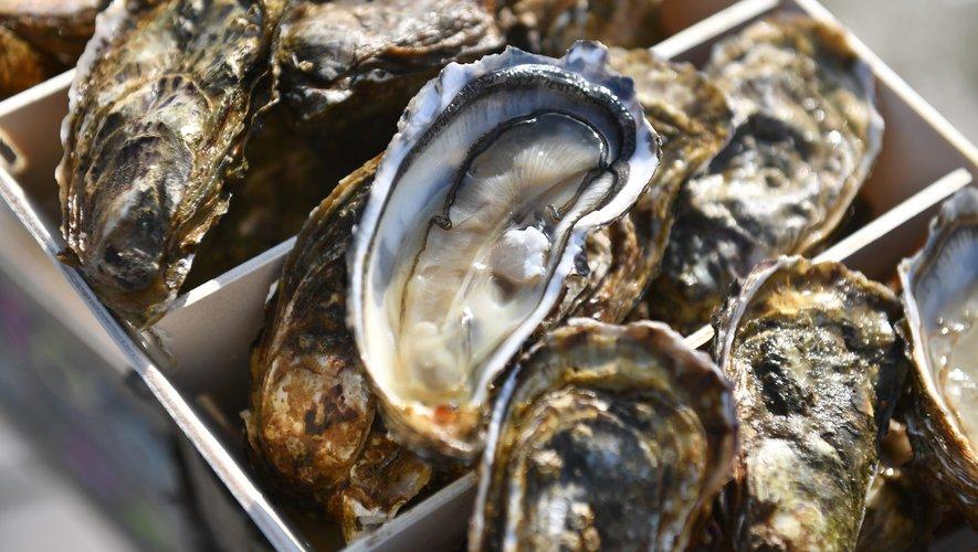 Près de la moitié des ventes françaises d'huîtres de Charente-Maritime ne trouvent pas preneurs pendant la crise sanitaire du Covid-19 et les ostréiculteurs craignent la faillite