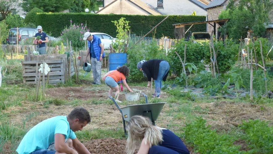 Les jardiniers de Riz'home ont retrouvé leurs parcelles.