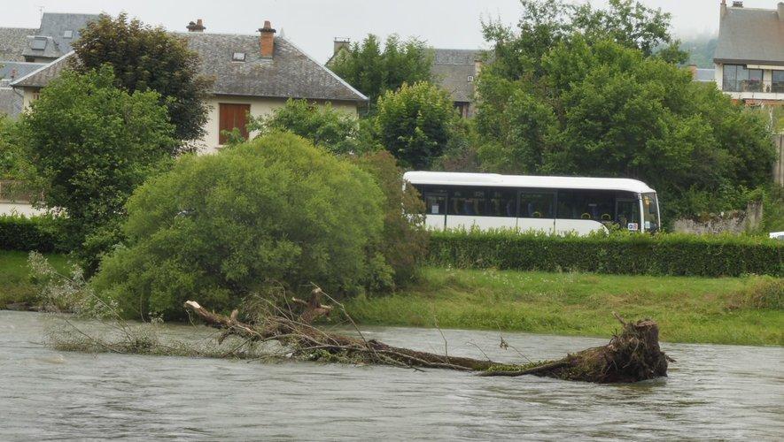 Le gros tronc d'arbre est reparti, un autre est arrivé